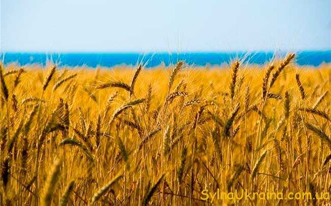 Календар знаменних і пам'ятних дат України на 2016 рік