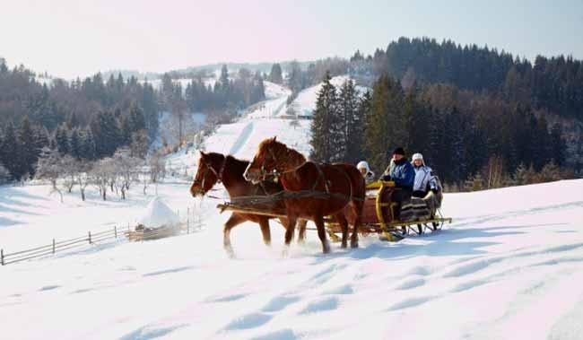 конячка йде по снігу