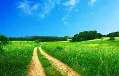 зелена дорога