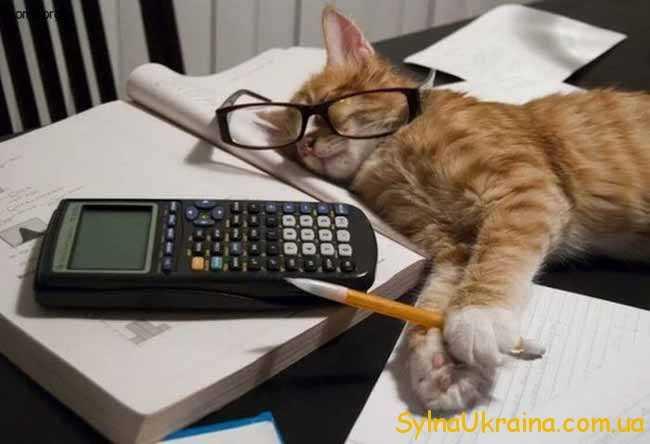 """""""бухгалтер"""" відпочиває"""