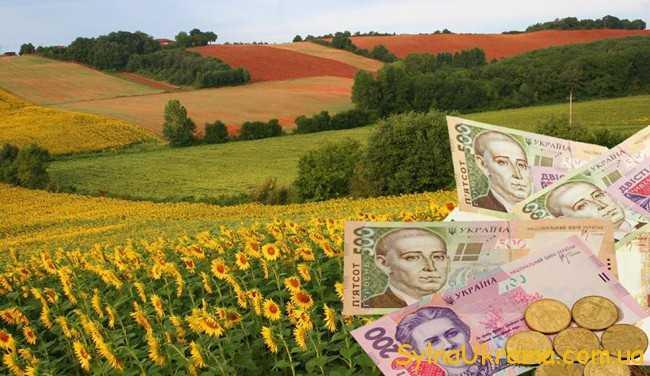 соняшники і гроші