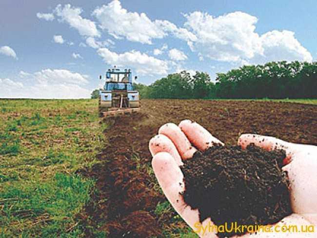 трактор,земля,рука