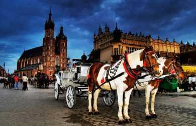 багато людей приїздить в Польщу для відпочинку і туризму