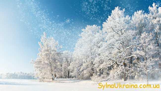 Чим порадує жителів України січнева зима?