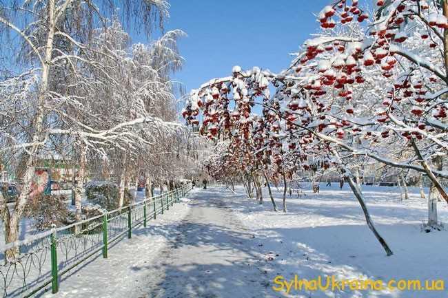 українці накінець зможуть насолодитись красою справжньої зимової казки