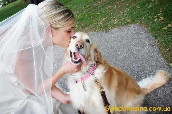 Що обіцяє весільний гороскоп