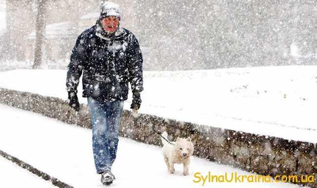 для української зими характерні морози