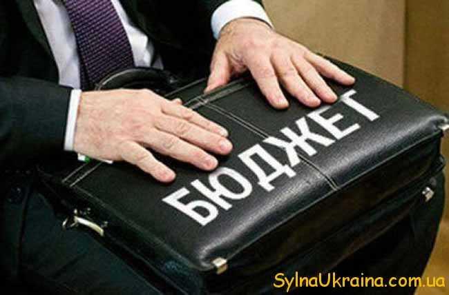 Паспорт бюджетної політики