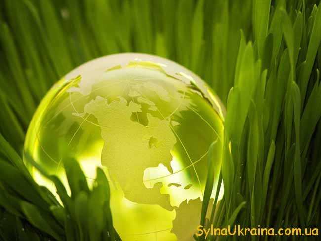 Цікава інформація щодо довкілля