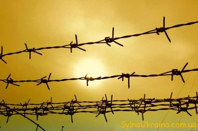 У яких випадках воїни АТО не підпадають під амністію?