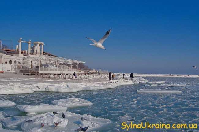 Погода в куйбышевском самарской обл