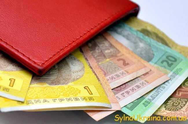 Встановлений рівень мінімальної заробітної плати...