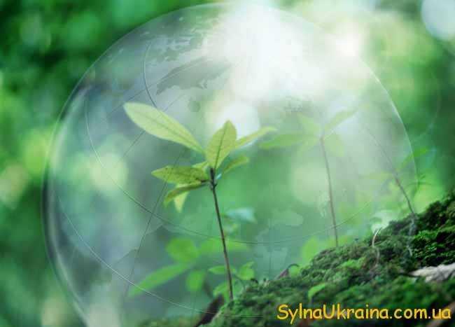 присвячені довкіллю...