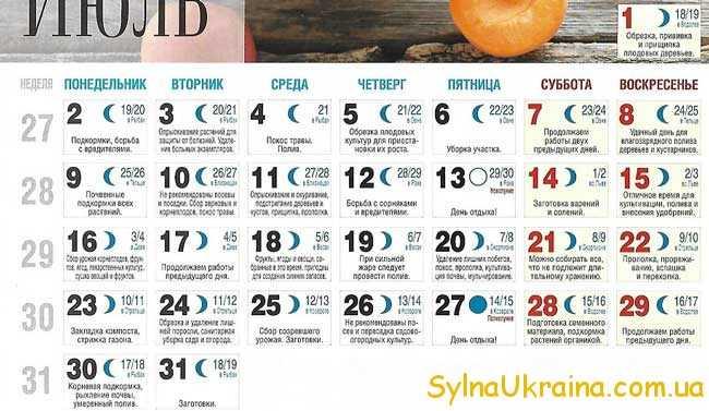 Посівний календар на липень 2018 року