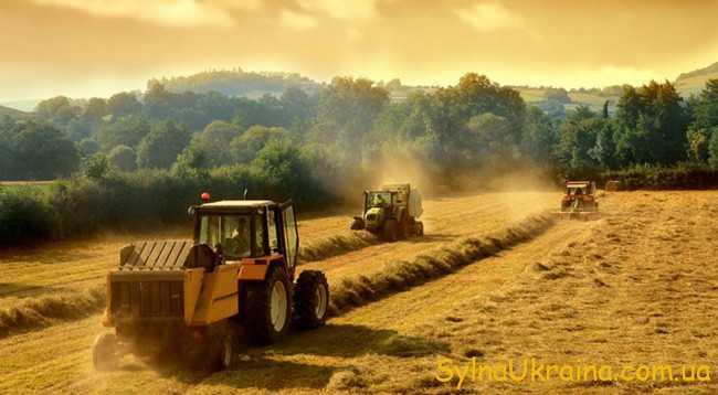 Рік фермерських угідь
